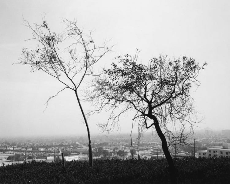 Robert Adams, Overlooking Long Beach, on Signal Hill, 1978–1983
